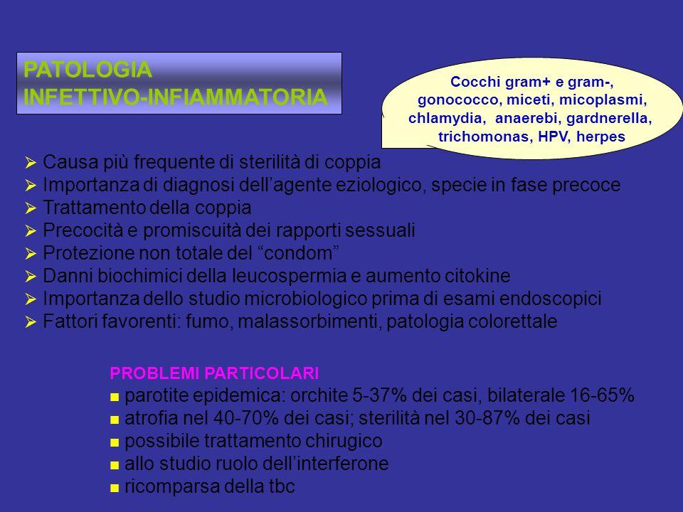 PATOLOGIA INFETTIVO-INFIAMMATORIA Causa più frequente di sterilità di coppia Importanza di diagnosi dellagente eziologico, specie in fase precoce Trattamento della coppia Precocità e promiscuità dei rapporti sessuali Protezione non totale del condom Danni biochimici della leucospermia e aumento citokine Importanza dello studio microbiologico prima di esami endoscopici Fattori favorenti: fumo, malassorbimenti, patologia colorettale PROBLEMI PARTICOLARI parotite epidemica: orchite 5-37% dei casi, bilaterale 16-65% atrofia nel 40-70% dei casi; sterilità nel 30-87% dei casi possibile trattamento chirugico allo studio ruolo dellinterferone ricomparsa della tbc Cocchi gram+ e gram-, gonococco, miceti, micoplasmi, chlamydia, anaerebi, gardnerella, trichomonas, HPV, herpes