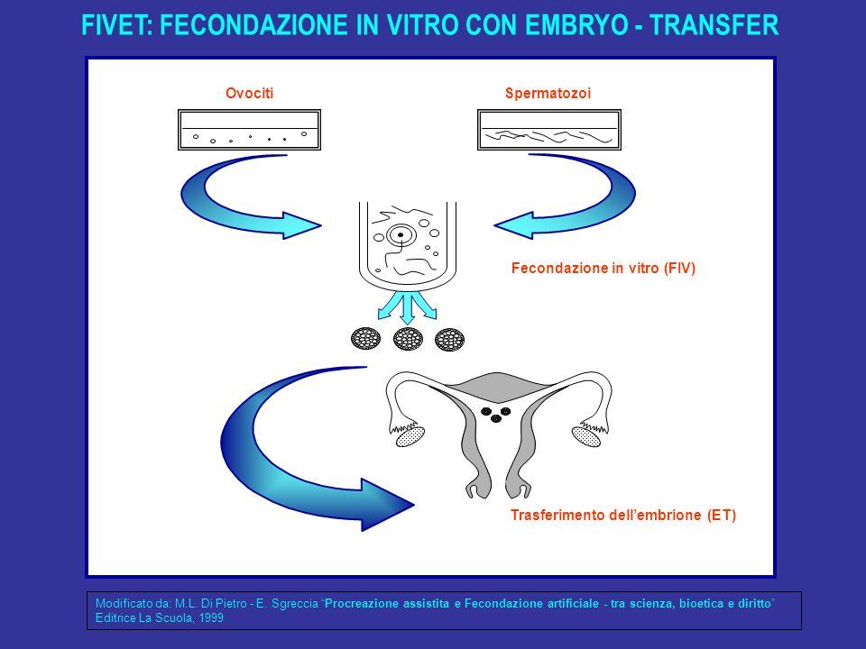 FIVET: FECONDAZIONE IN VITRO CON EMBRYO - TRANSFER Trasferimento dellembrione (ET) Fecondazione in vitro (FIV) OvocitiSpermatozoi Modificato da: M.L.