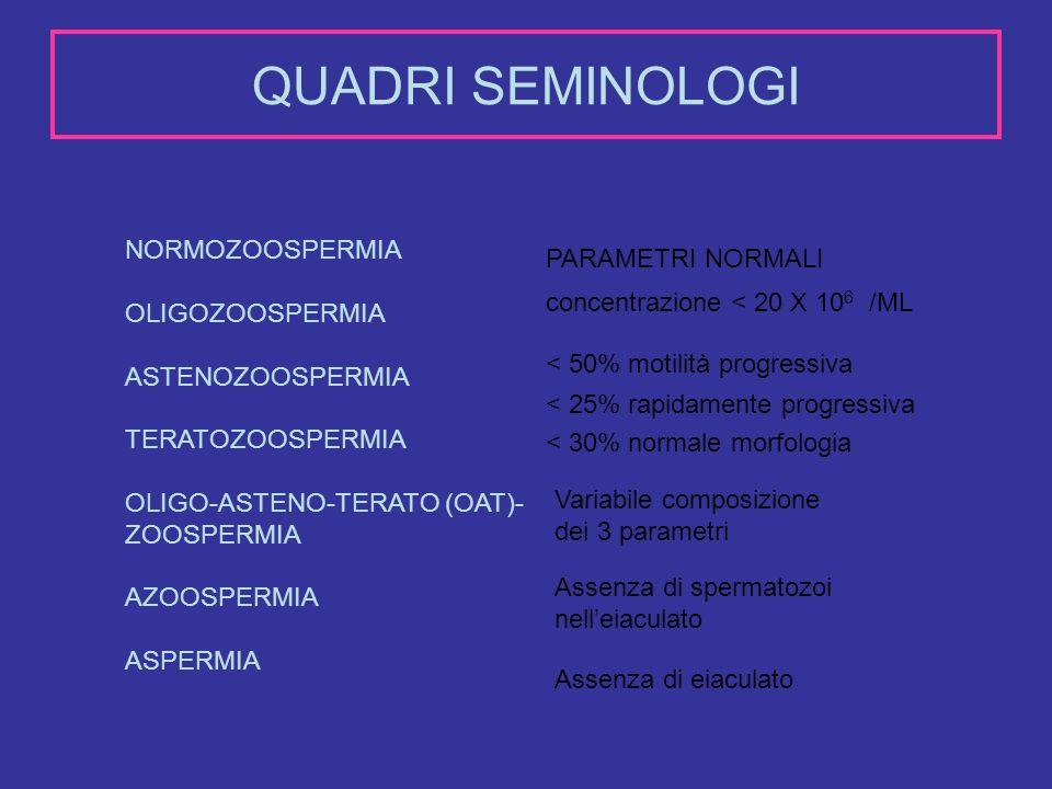 QUADRI SEMINOLOGI NORMOZOOSPERMIA OLIGOZOOSPERMIA ASTENOZOOSPERMIA TERATOZOOSPERMIA OLIGO-ASTENO-TERATO (OAT)- ZOOSPERMIA AZOOSPERMIA ASPERMIA PARAMET