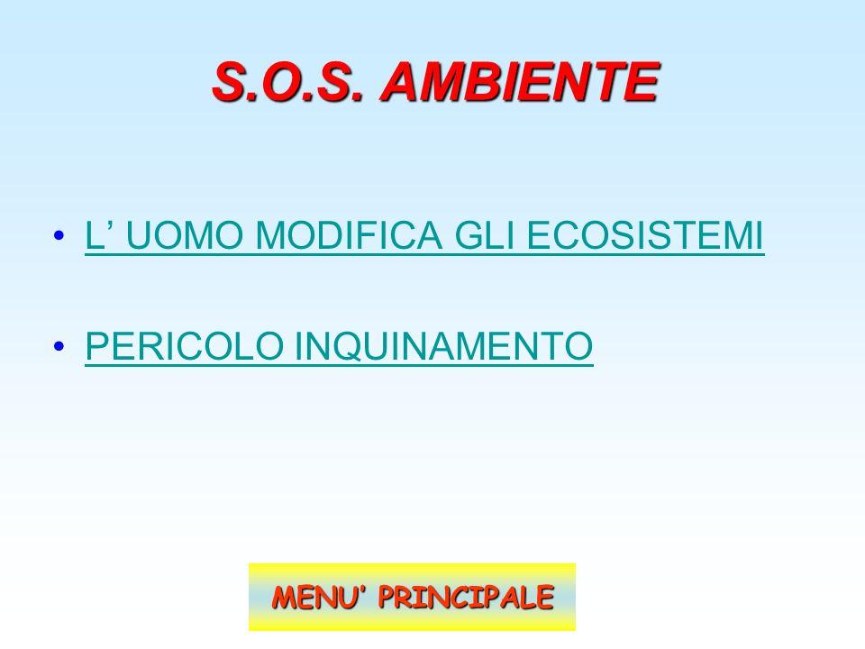 S.O.S. AMBIENTE L UOMO MODIFICA GLI ECOSISTEMI PERICOLO INQUINAMENTO MENU PRINCIPALE MENU PRINCIPALE