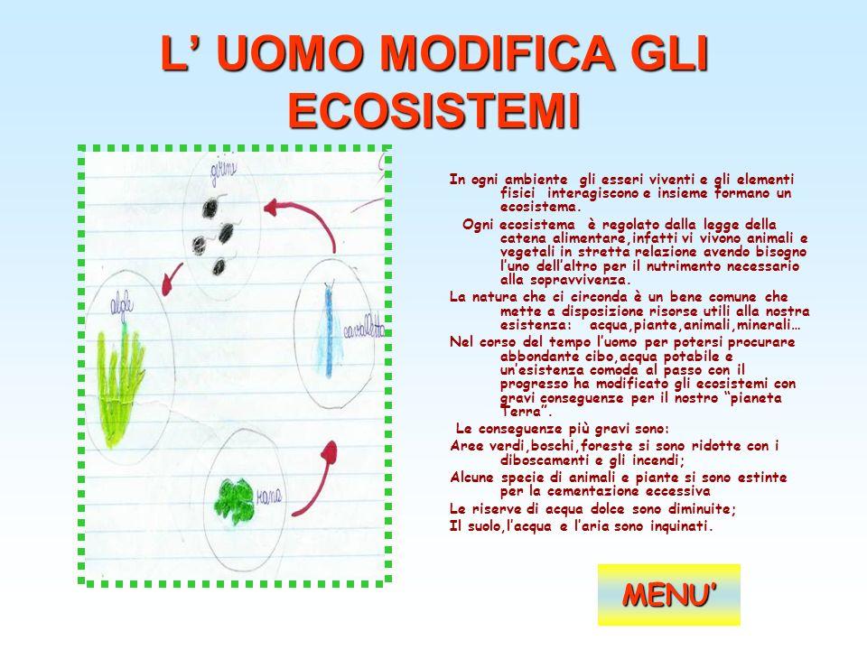 L UOMO MODIFICA GLI ECOSISTEMI In ogni ambiente gli esseri viventi e gli elementi fisici interagiscono e insieme formano un ecosistema. Ogni ecosistem