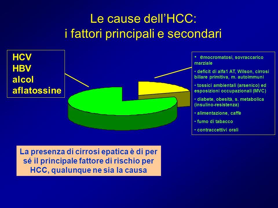 Le cause dellHCC: i fattori principali e secondari e mocromatosi, sovraccarico marziale deficit di alfa1 AT, Wilson, cirrosi biliare primitiva, m. aut