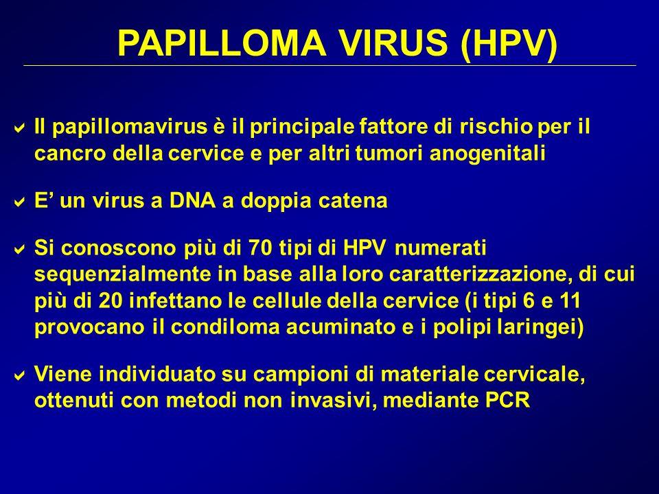 Il papillomavirus è il principale fattore di rischio per il cancro della cervice e per altri tumori anogenitali E un virus a DNA a doppia catena Si co