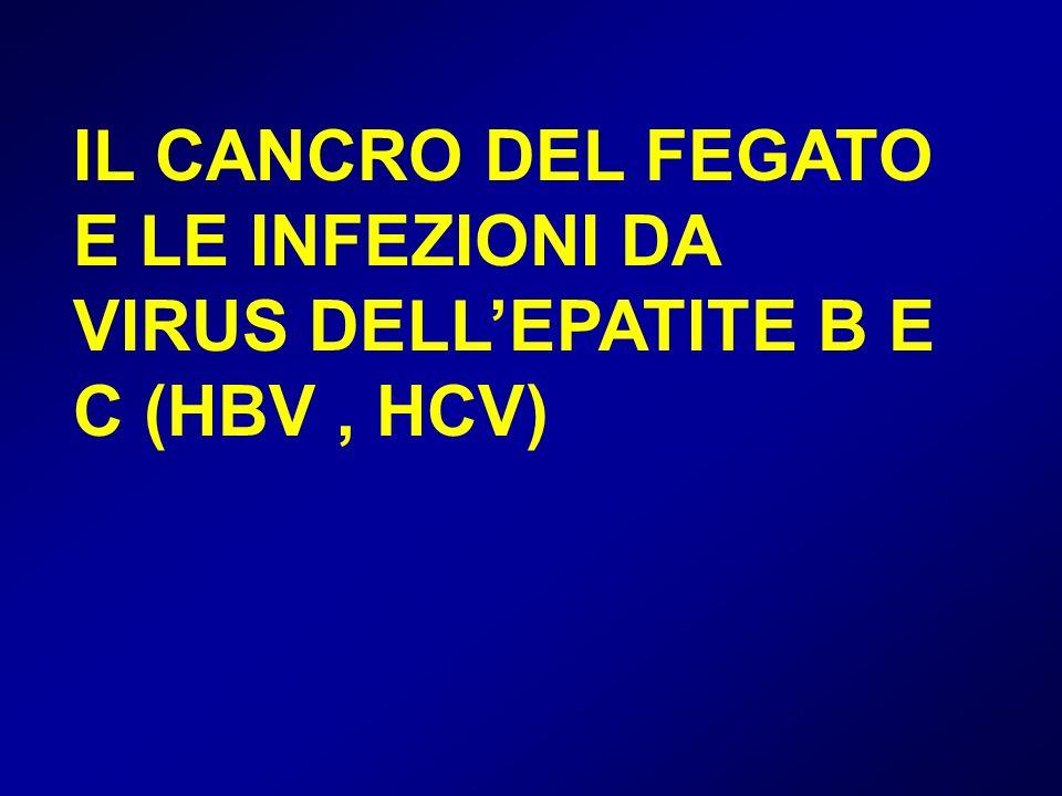 IL CANCRO DEL FEGATO E LE INFEZIONI DA VIRUS DELLEPATITE B E C (HBV, HCV)