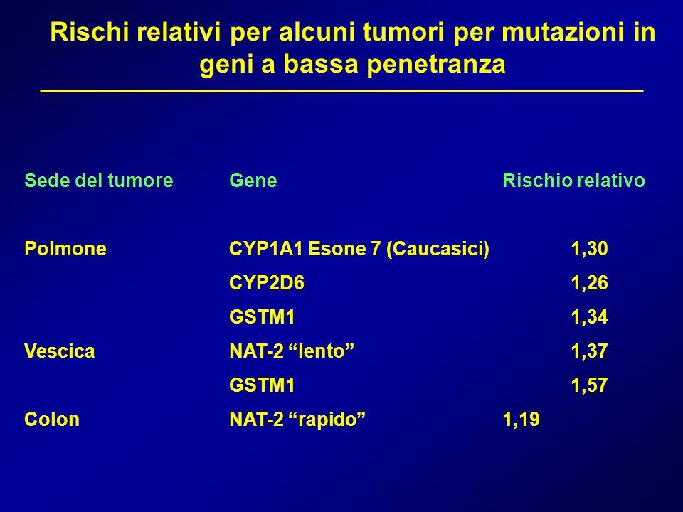 Rischi relativi per alcuni tumori per mutazioni in geni a bassa penetranza Sede del tumoreGeneRischio relativo PolmoneCYP1A1 Esone 7 (Caucasici)1,30 C