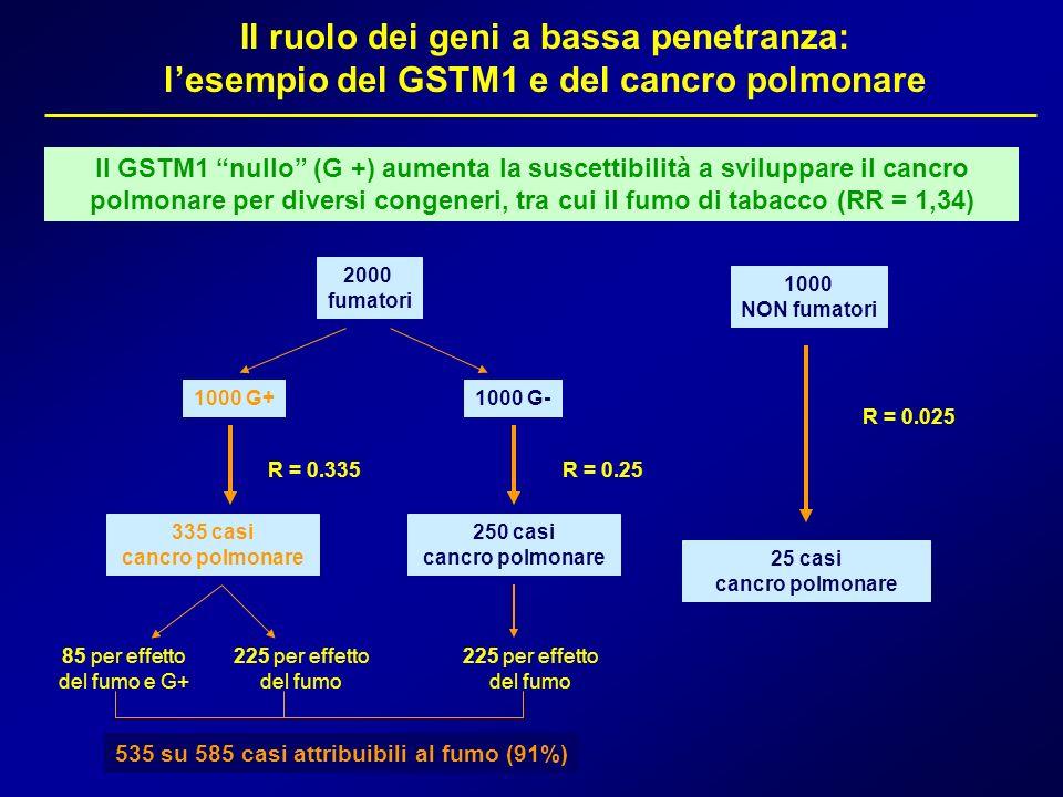 Il ruolo dei geni a bassa penetranza: lesempio del GSTM1 e del cancro polmonare Il GSTM1 nullo (G +) aumenta la suscettibilità a sviluppare il cancro