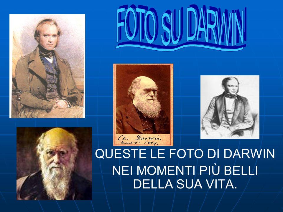 QUESTE LE FOTO DI DARWIN NEI MOMENTI PIÙ BELLI DELLA SUA VITA.