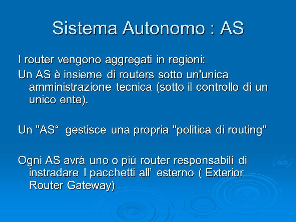 Sistema Autonomo : AS I router vengono aggregati in regioni: Un AS è insieme di routers sotto un'unica amministrazione tecnica (sotto il controllo di