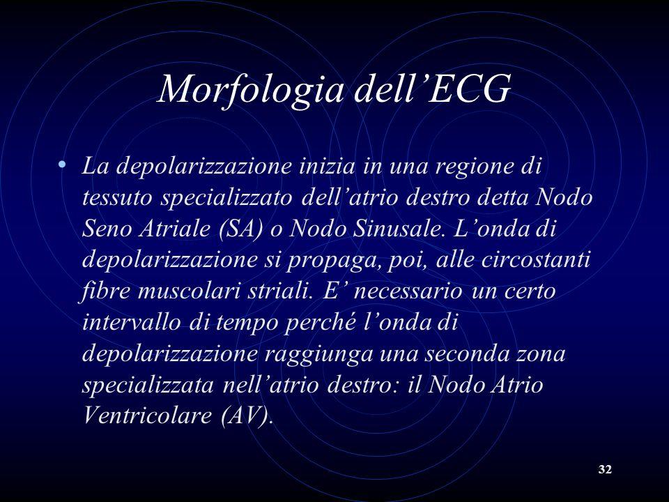 32 Morfologia dellECG La depolarizzazione inizia in una regione di tessuto specializzato dellatrio destro detta Nodo Seno Atriale (SA) o Nodo Sinusale