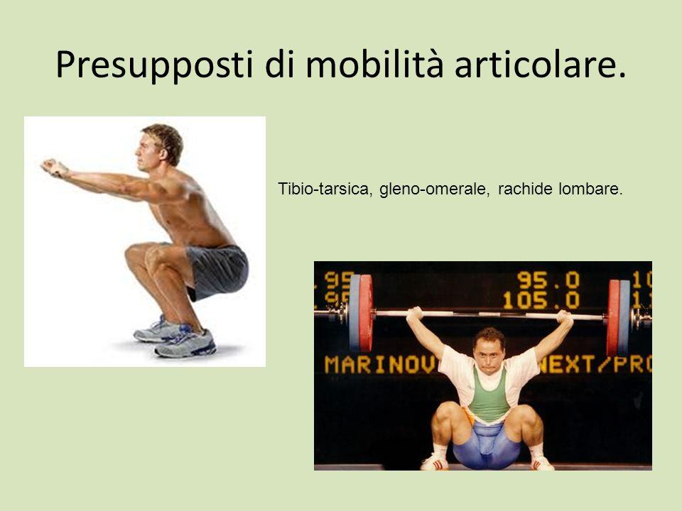 Presupposti di mobilità articolare. Tibio-tarsica, gleno-omerale, rachide lombare.