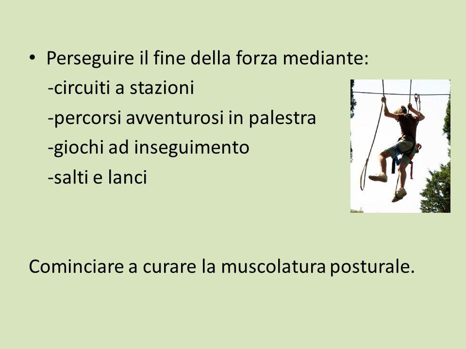 Perseguire il fine della forza mediante: -circuiti a stazioni -percorsi avventurosi in palestra -giochi ad inseguimento -salti e lanci Cominciare a curare la muscolatura posturale.