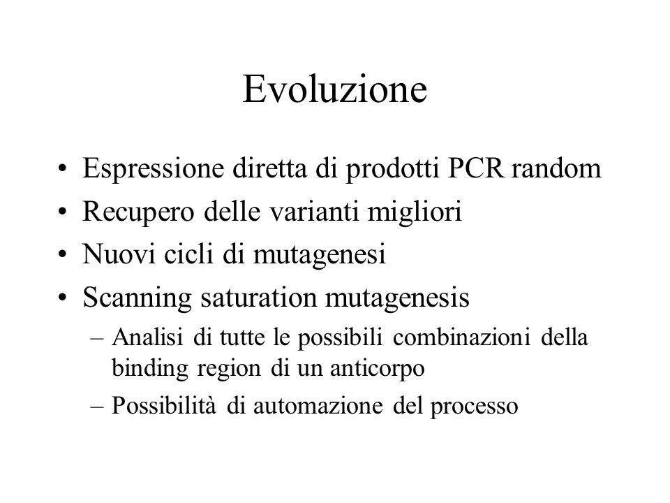 Evoluzione Espressione diretta di prodotti PCR random Recupero delle varianti migliori Nuovi cicli di mutagenesi Scanning saturation mutagenesis –Anal