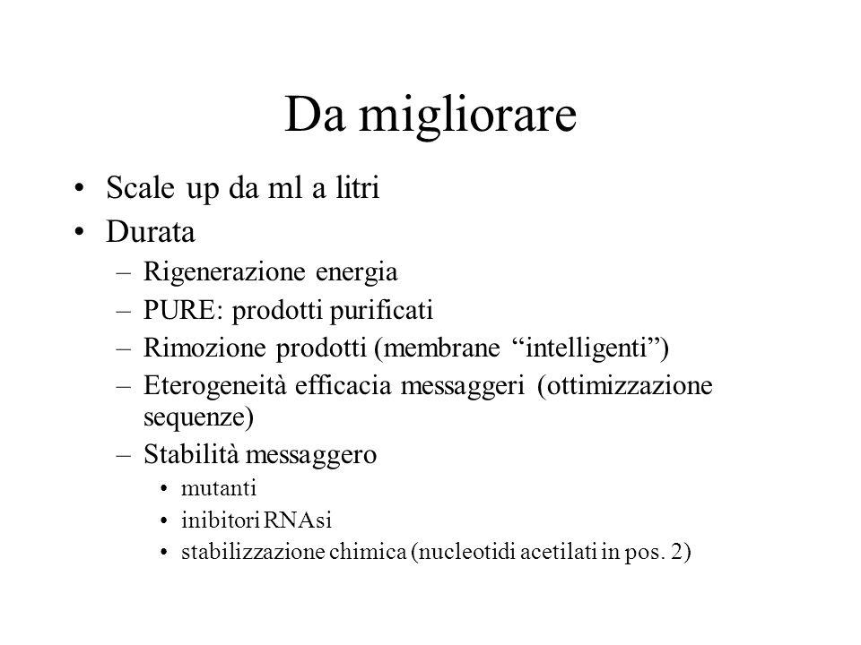 Da migliorare Scale up da ml a litri Durata –Rigenerazione energia –PURE: prodotti purificati –Rimozione prodotti (membrane intelligenti) –Eterogeneit
