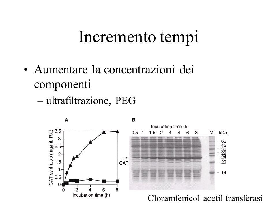 Incremento tempi Aumentare la concentrazioni dei componenti –ultrafiltrazione, PEG Cloramfenicol acetil transferasi