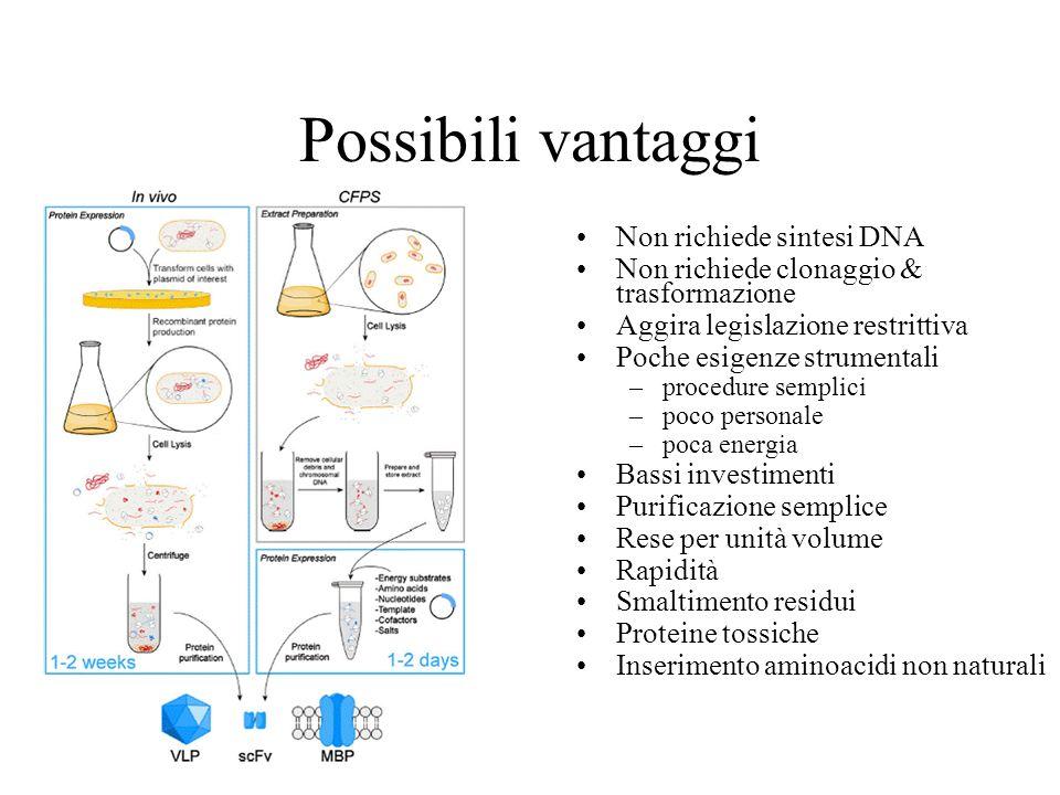 Possibili vantaggi Non richiede sintesi DNA Non richiede clonaggio & trasformazione Aggira legislazione restrittiva Poche esigenze strumentali –proced