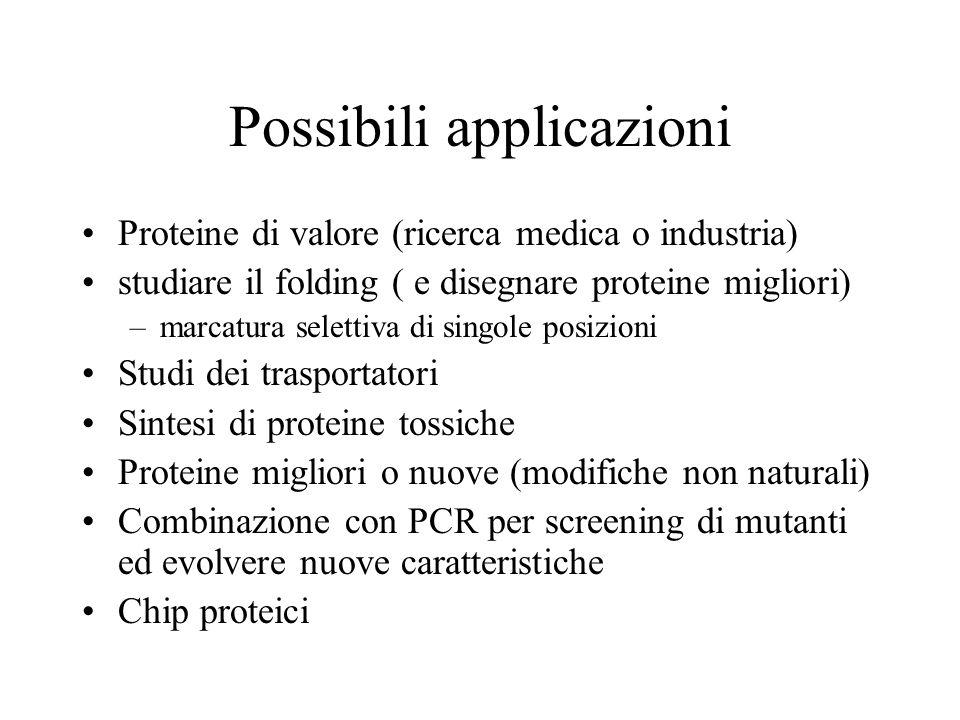 Possibili applicazioni Proteine di valore (ricerca medica o industria) studiare il folding ( e disegnare proteine migliori) –marcatura selettiva di si