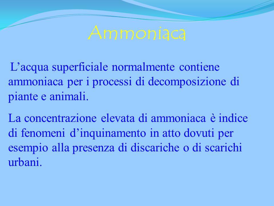 Ammoniaca NH 3 scarichi urbani Nitriti NO 2 - inquinamento recente Nitrati NO 3 - inquinamento passato Fosfati PO 4 -3 fertilizzanti e detersivi. ANAL