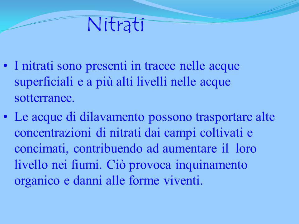 Nitriti Derivano dall ossidazione dell ammoniaca prima che si formino i nitrati. La loro presenza è indice di inquinamento recente, può avvenire nelle