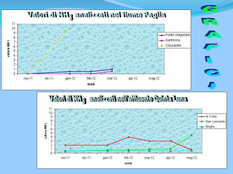 PARAMETRO CAMPIONE Aspetto Colore Odore T °C Misure in situ (aria) T °C Misure H2O pH (-) Misure in situ Ossigeno disciolto mg/l s cm -1 Solidi sospes