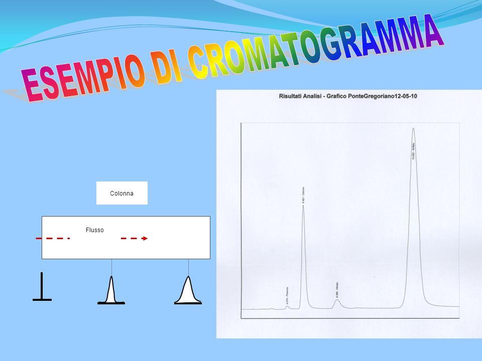 ANALISI CHIMICHE CON IL CROMATOGRAFO A SOPPRESSIONE DI IONI (SIC) L'analisi degli anioni state effettuate con il seguente apparecchio: Cromatografo Sh