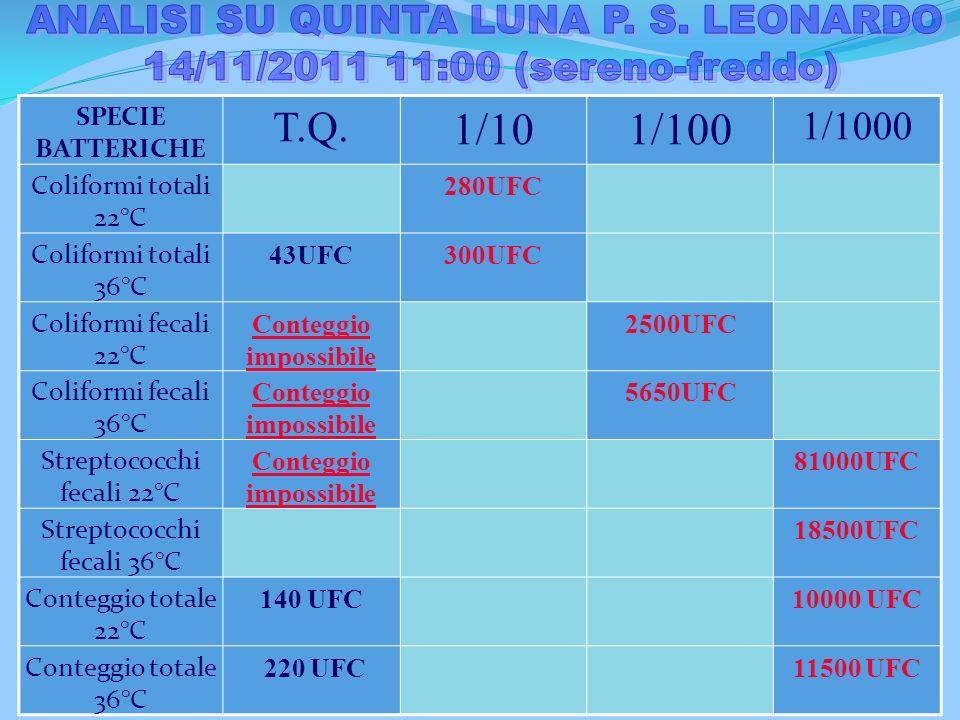 Sito di campionamento Valori Limiti di legge per le acque di balneazione Limiti di legge per le acque in uscita da un depuiratore Limiti di legge per
