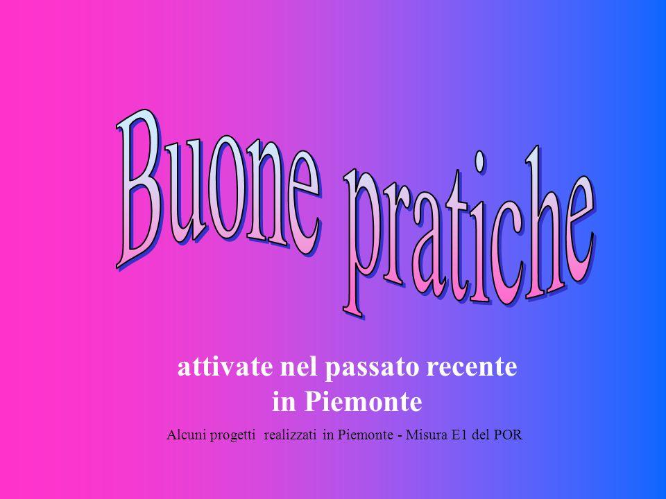attivate nel passato recente in Piemonte Alcuni progetti realizzati in Piemonte - Misura E1 del POR
