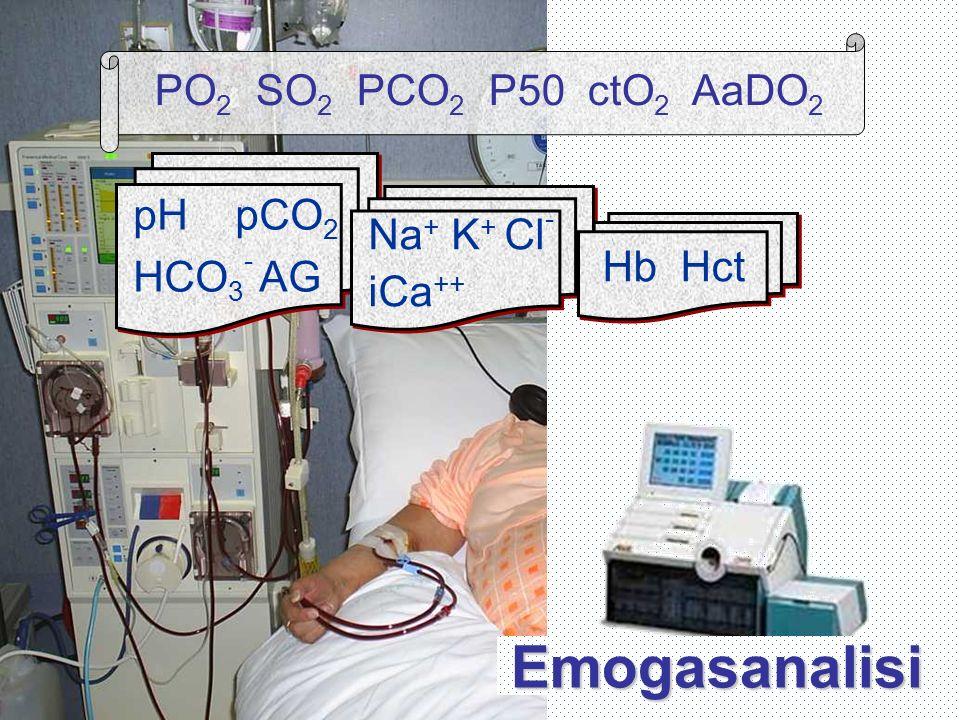 Emogasanalisi pH pCO 2 HCO 3 - AG Na + K + Cl - iCa ++ Hb Hct PO 2 SO 2 PCO 2 P50 ctO 2 AaDO 2