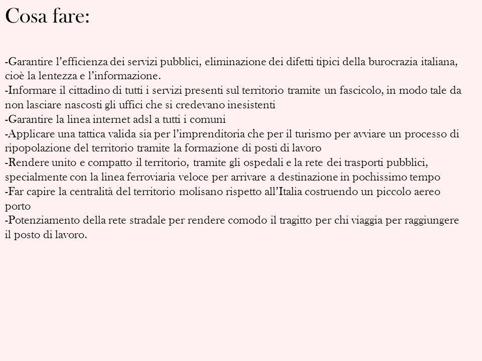 Cosa fare: -Garantire lefficienza dei servizi pubblici, eliminazione dei difetti tipici della burocrazia italiana, cioè la lentezza e linformazione. -