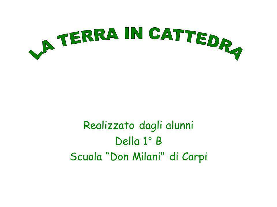 Realizzato dagli alunni Della 1° B Scuola Don Milani di Carpi
