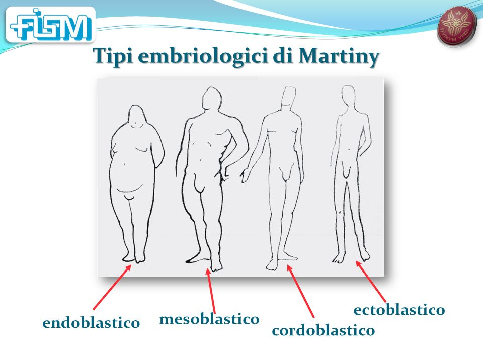 Tipi embriologici di Martiny endoblastico mesoblastico cordoblastico ectoblastico