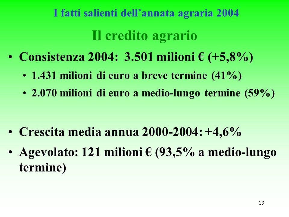 13 Il credito agrario Consistenza 2004: 3.501 milioni (+5,8%) 1.431 milioni di euro a breve termine (41%) 2.070 milioni di euro a medio-lungo termine (59%) Crescita media annua 2000-2004: +4,6% Agevolato: 121 milioni (93,5% a medio-lungo termine) I fatti salienti dellannata agraria 2004