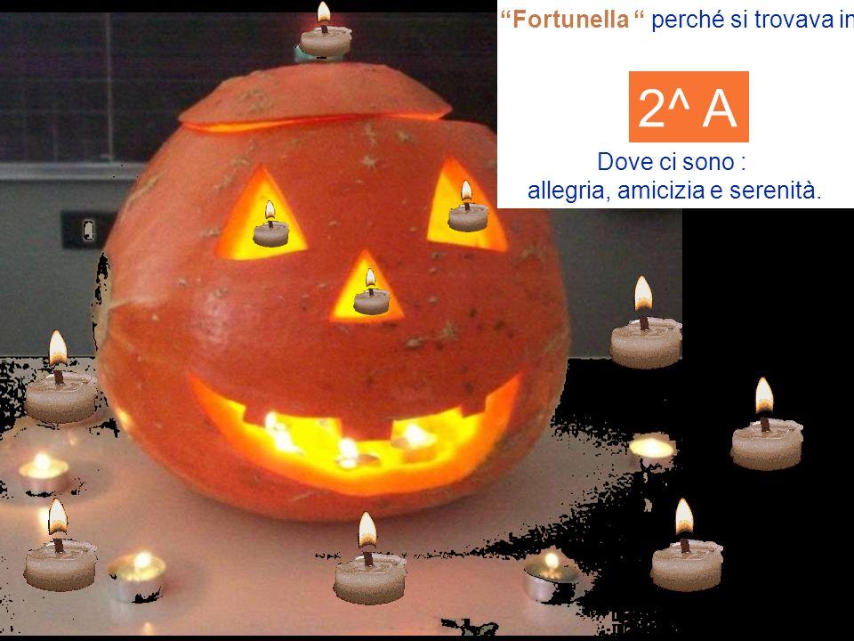 Fortunella perché si trovava in Dove ci sono : allegria, amicizia e serenità. 2^ A
