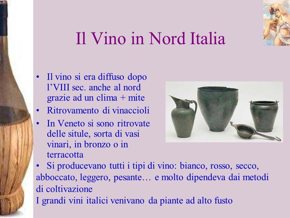 Il Vino in Nord Italia Il vino si era diffuso dopo lVIII sec. anche al nord grazie ad un clima + mite Ritrovamento di vinaccioli In Veneto si sono rit