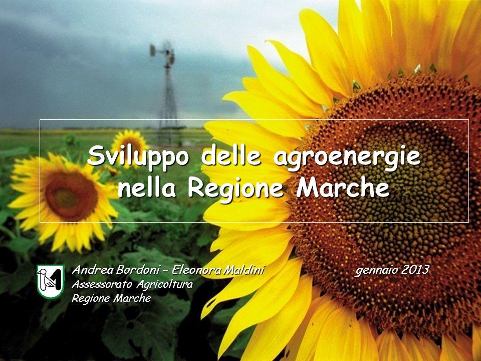 Sviluppo delle agroenergie nella Regione Marche Andrea Bordoni – Eleonora Maldini Assessorato Agricoltura Regione Marche gennaio 2013