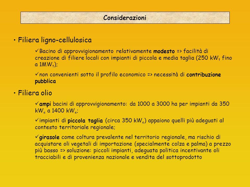 Considerazioni Filiera ligno-cellulosica Bacino di approvvigionamento relativamente modesto => facilità di creazione di filiere locali con impianti di