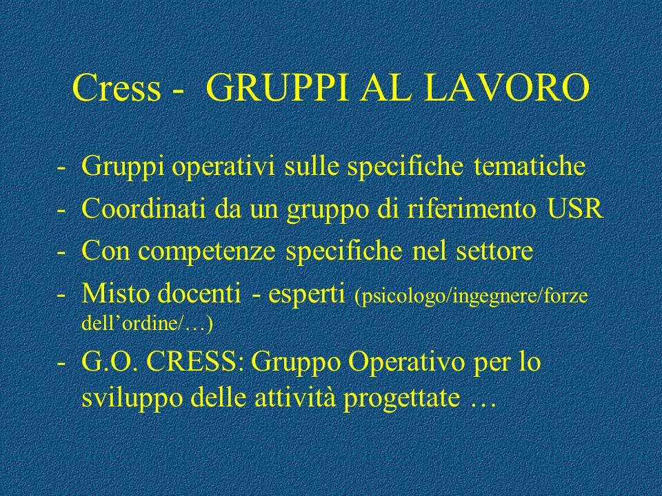 Cress - GRUPPI AL LAVORO -Gruppi operativi sulle specifiche tematiche -Coordinati da un gruppo di riferimento USR -Con competenze specifiche nel setto