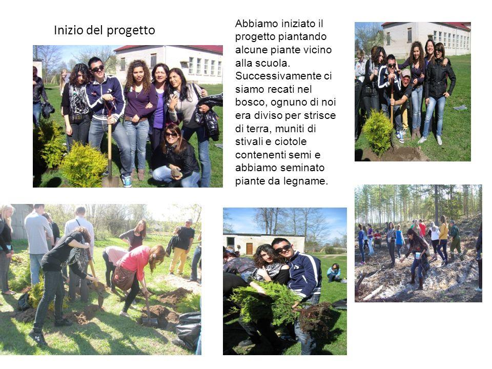 Inizio del progetto Abbiamo iniziato il progetto piantando alcune piante vicino alla scuola.