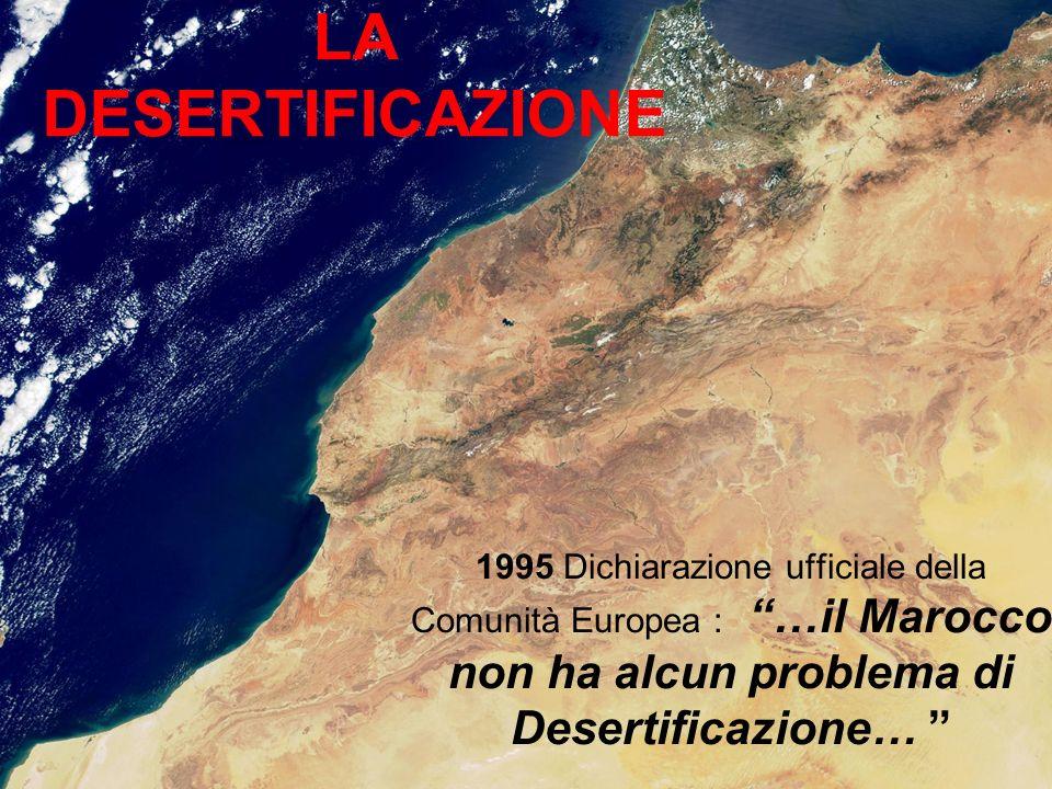 1995 Dichiarazione ufficiale della Comunità Europea : …il Marocco non ha alcun problema di Desertificazione… LA DESERTIFICAZIONE