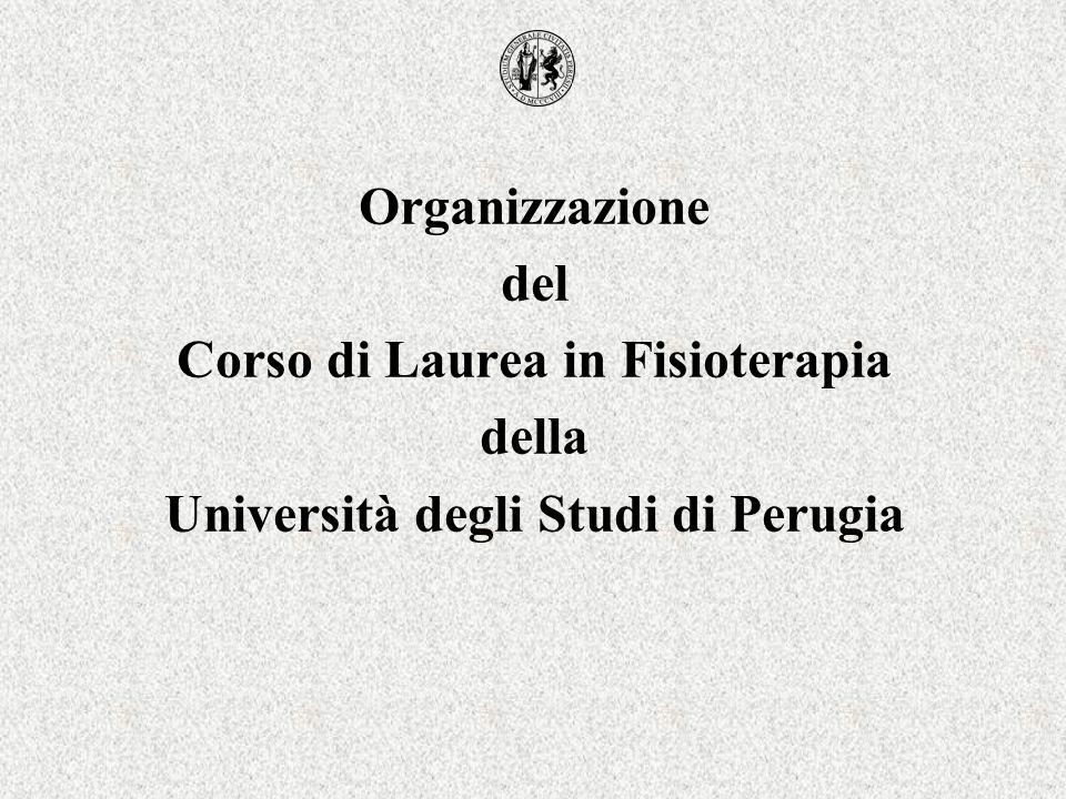 Organizzazione del Corso di Laurea in Fisioterapia della Università degli Studi di Perugia