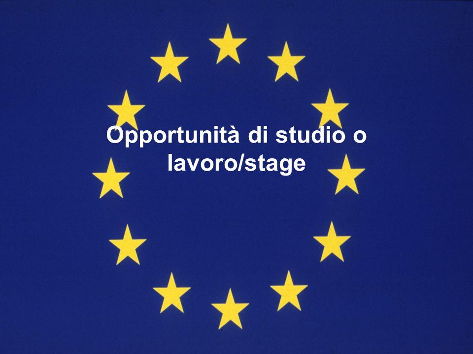Opportunità di studio o lavoro/stage