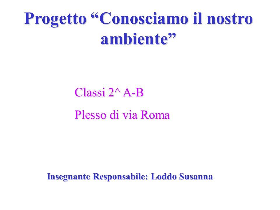 Progetto Conosciamo il nostro ambiente Classi 2^ A-B Plesso di via Roma Insegnante Responsabile: Loddo Susanna