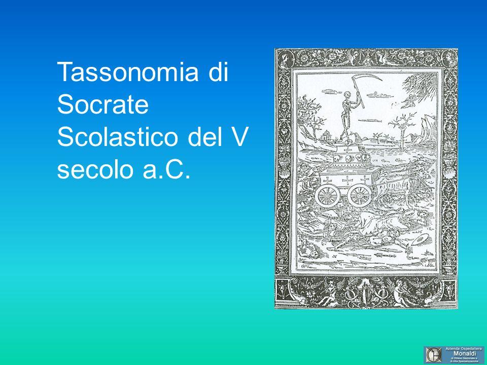 Tassonomia di Socrate Scolastico del V secolo a.C.