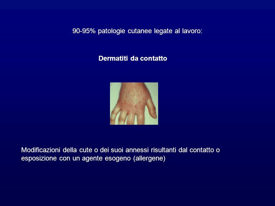 90-95% patologie cutanee legate al lavoro: Dermatiti da contatto Modificazioni della cute o dei suoi annessi risultanti dal contatto o esposizione con un agente esogeno (allergene)