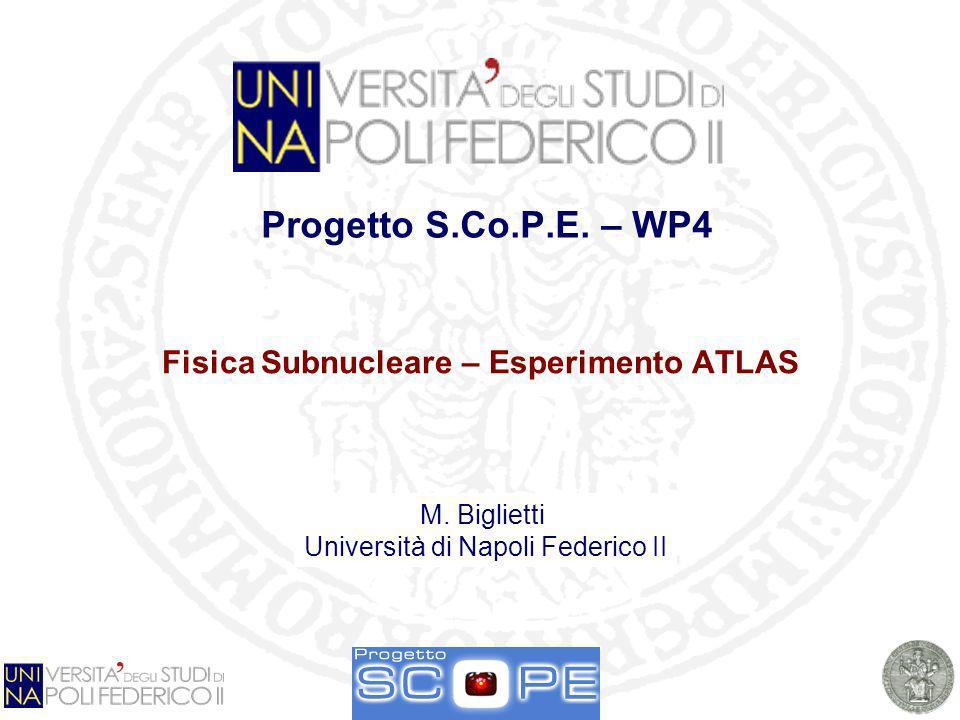 Workshop SCoPE - Stato del progetto e dei Work Packages Sala Azzurra - Complesso universitario Monte SantAngelo 21-2-2008 Large Hadron Collider (LHC) Collisionatore protone - protone Energia nel centro di massa di 14 TeV Circonferenza di 27 km Programma di fisica Studio della fisica delle particelle nel range del TeV Ricerca del bosone di Higgs di Modello Standard Ricerca di particelle supersimmetriche Misure di precisione Partenza prevista nel 2008 ATLAS ALICE CMS LHCb