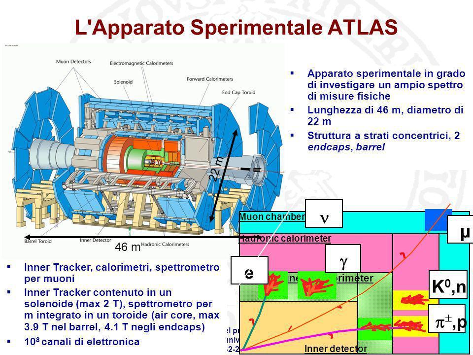Workshop SCoPE - Stato del progetto e dei Work Packages Sala Azzurra - Complesso universitario Monte SantAngelo 21-2-2008 L'Apparato Sperimentale ATLA