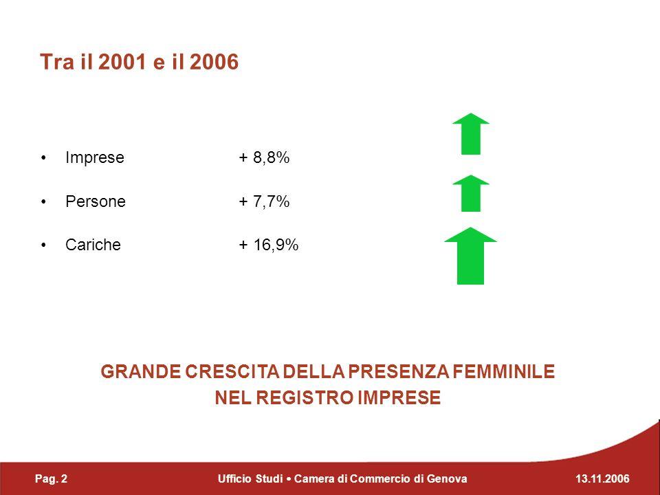 Tra il 2001 e il 2006 Imprese + 8,8% Persone + 7,7% Cariche + 16,9% GRANDE CRESCITA DELLA PRESENZA FEMMINILE NEL REGISTRO IMPRESE Pag. 213.11.2006Uffi