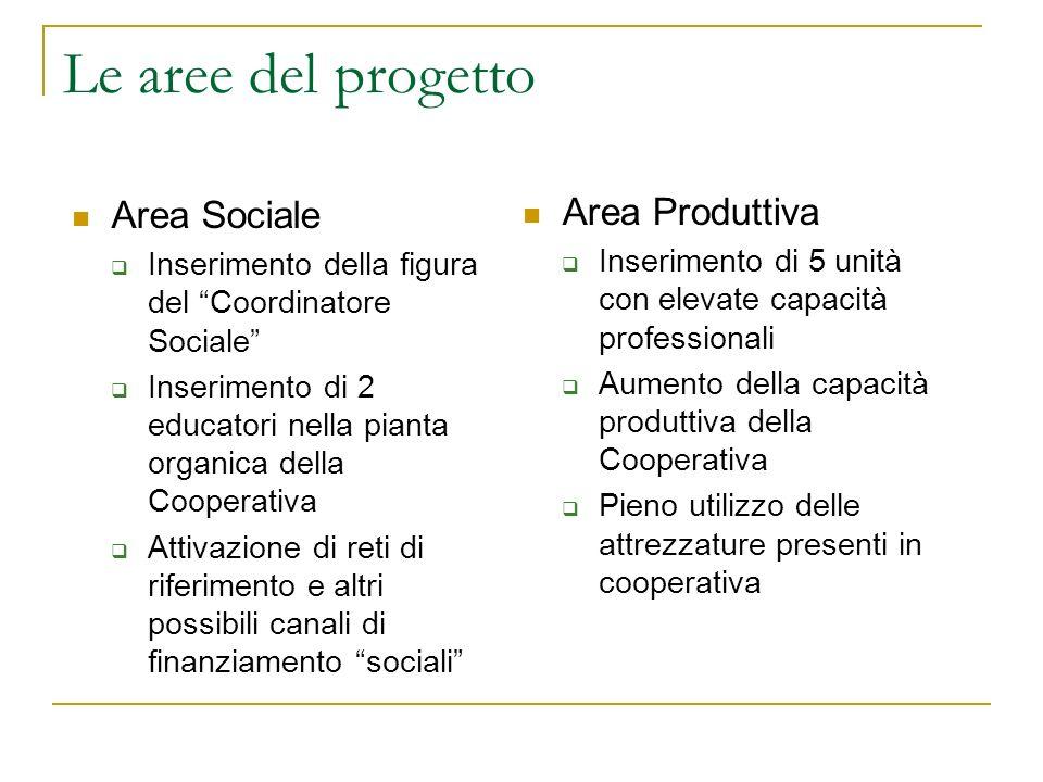 Le aree del progetto Area Sociale Inserimento della figura del Coordinatore Sociale Inserimento di 2 educatori nella pianta organica della Cooperativa