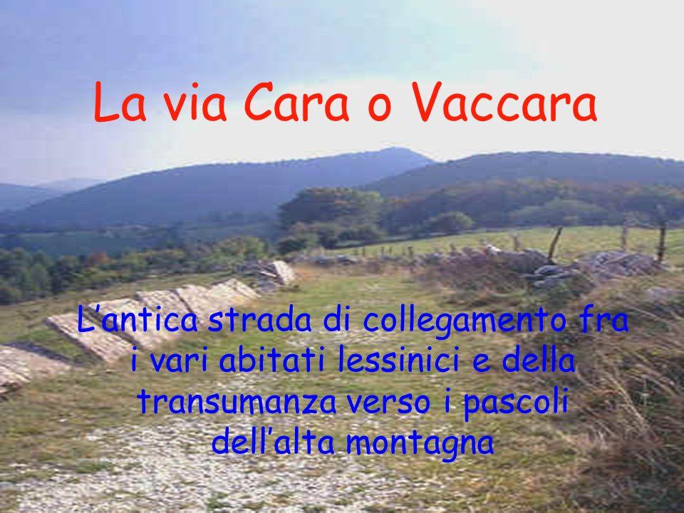 La via Cara o Vaccara Lantica strada di collegamento fra i vari abitati lessinici e della transumanza verso i pascoli dellalta montagna