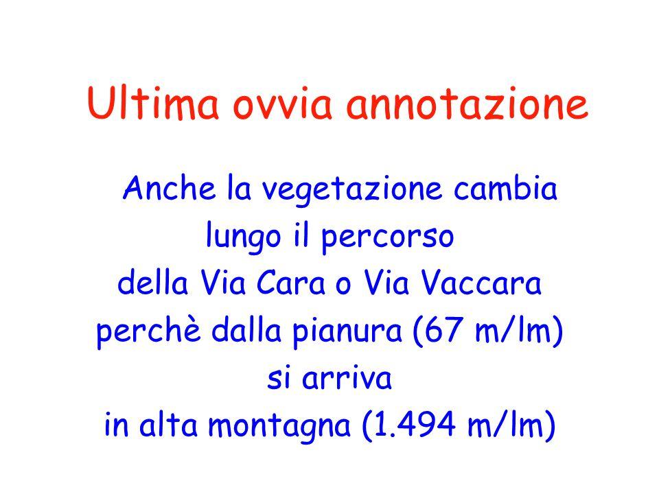 Ultima ovvia annotazione Anche la vegetazione cambia lungo il percorso della Via Cara o Via Vaccara perchè dalla pianura (67 m/lm) si arriva in alta m