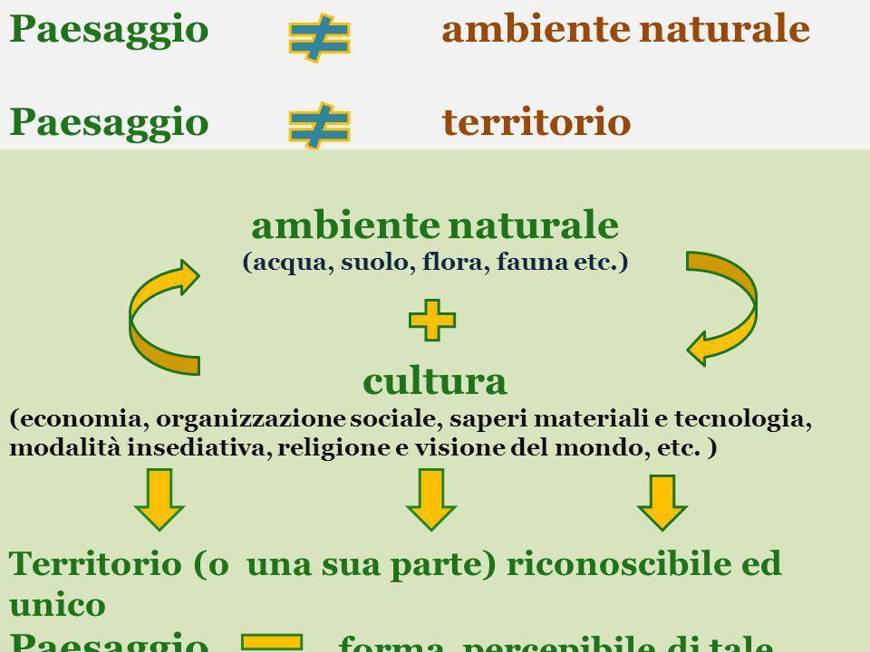 Paesaggio ambiente naturale Paesaggio territorio ambiente naturale (acqua, suolo, flora, fauna etc.) cultura (economia, organizzazione sociale, saperi